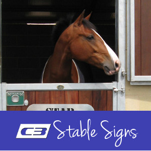 Stable Signs