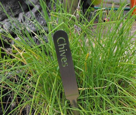 Herb Garden Planters